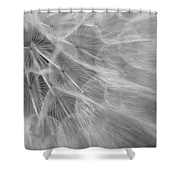 Propagation Shower Curtain
