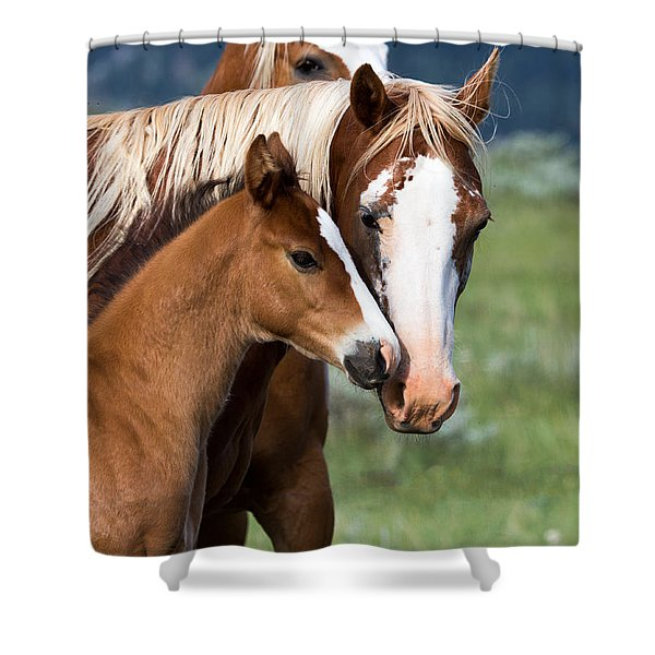 Proud Mommy Shower Curtain