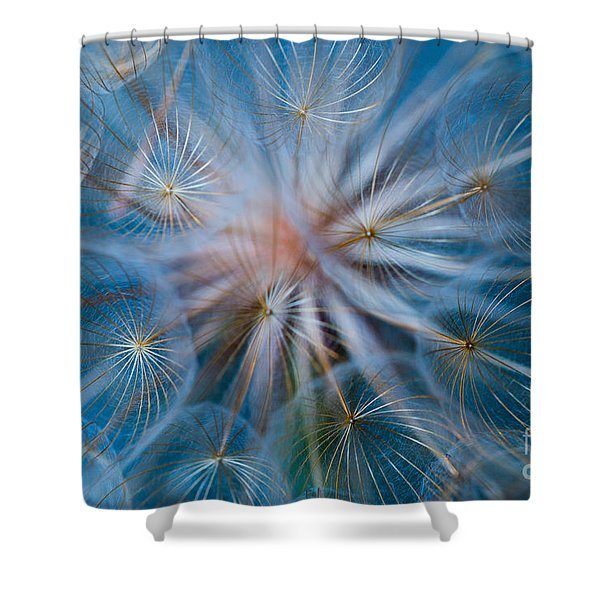 Shower Curtain featuring the photograph Puff-ball In Blue by Jaroslaw Blaminsky