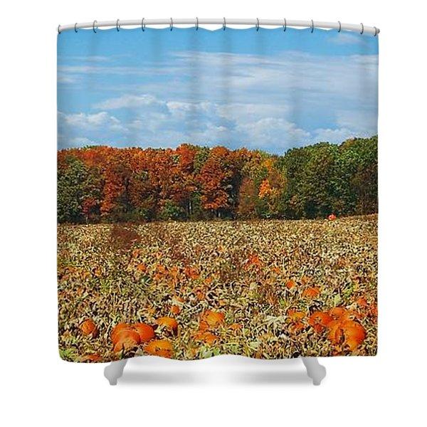 Pumpkin Patch - Panorama Shower Curtain