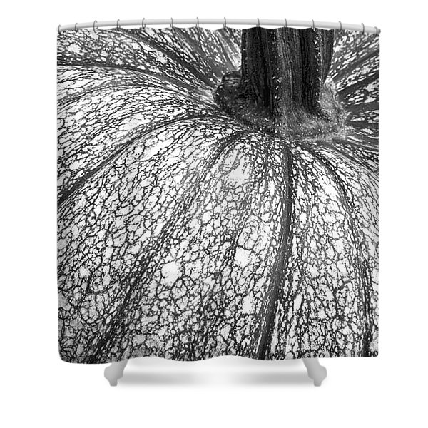 Pumpkin Pumpkin Black And White Shower Curtain