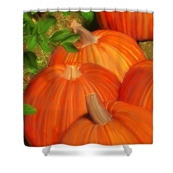 Pumpkins Pumpkins Everywhere Shower Curtain