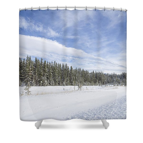 Pure Delight Shower Curtain
