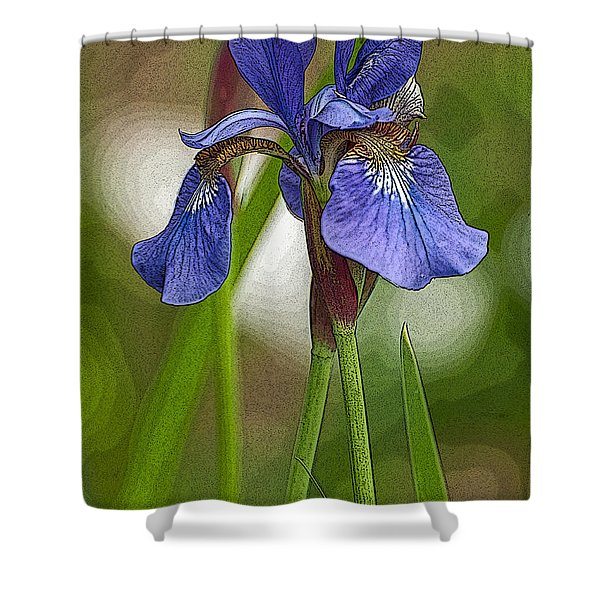 Purple Bearded Iris Watercolor With Pen Shower Curtain