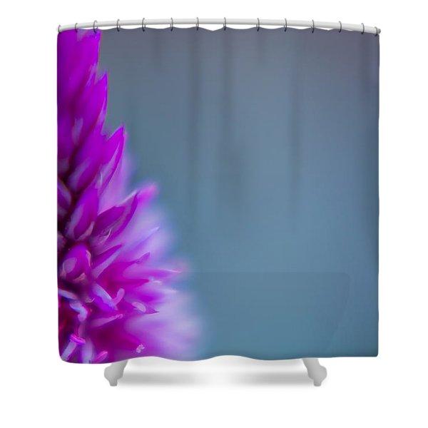 Purple Blur Shower Curtain