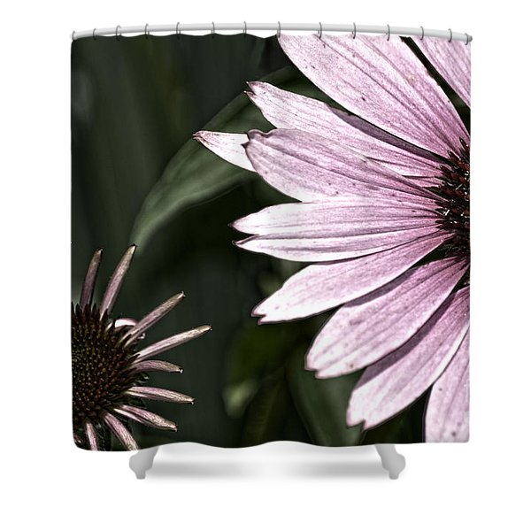 Purple Coneflower Imperfection Shower Curtain