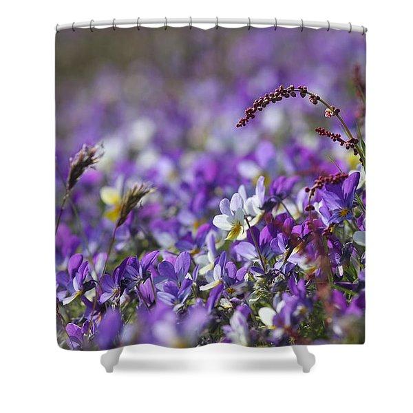 Purple Flower Bed Shower Curtain