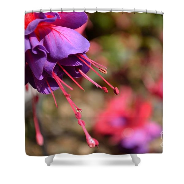 Shower Curtain featuring the photograph Purple Fuchsia by Scott Lyons