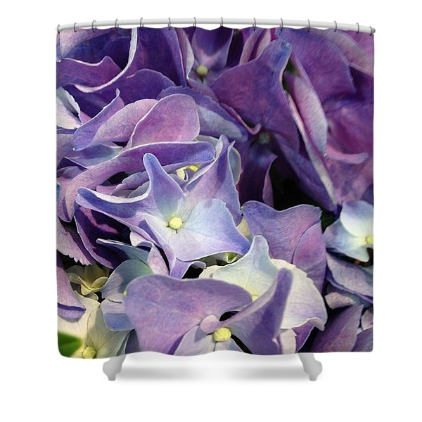 Purple Hydrangeas Shower Curtain