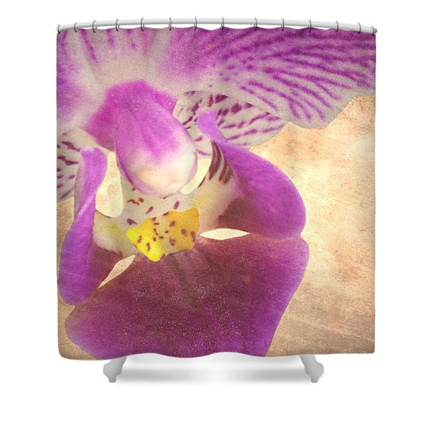 Purple Orchid 1 Shower Curtain