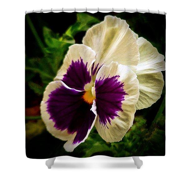 Purple Pansy Shower Curtain