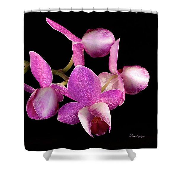 Purple Phal Shower Curtain