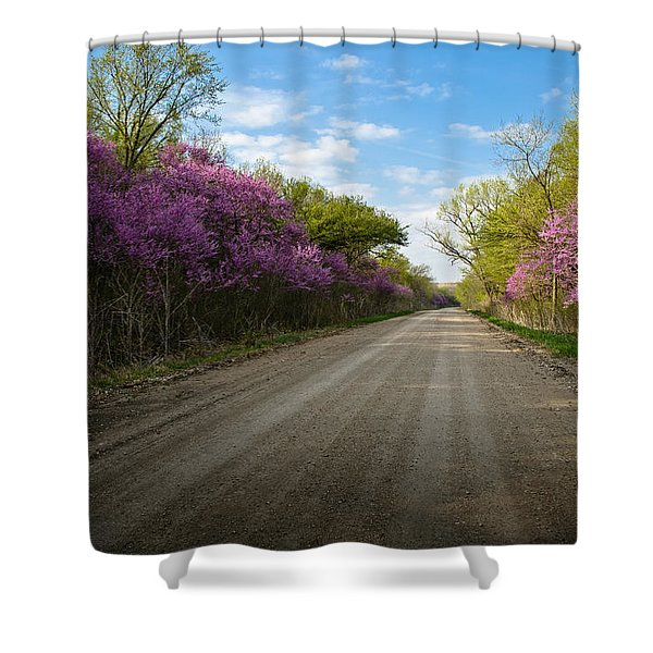 Purple Road Shower Curtain