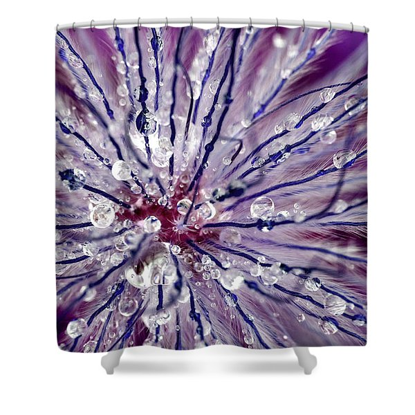 Purple Tentacles In Abstract Flower Shot Shower Curtain