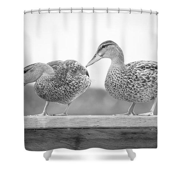 Quack Quack Shower Curtain