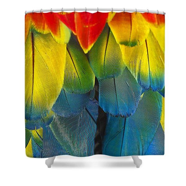 Quillicious... Shower Curtain
