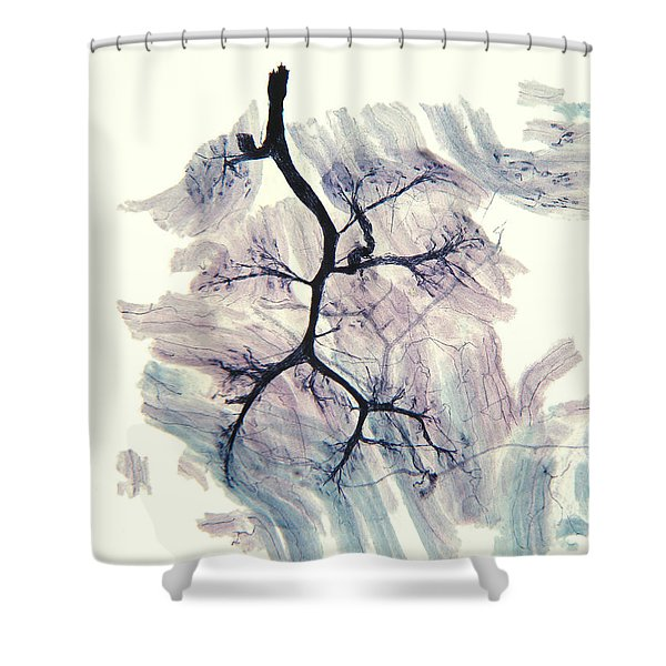 Rabbit Neuron Nerve Ending Lm Shower Curtain