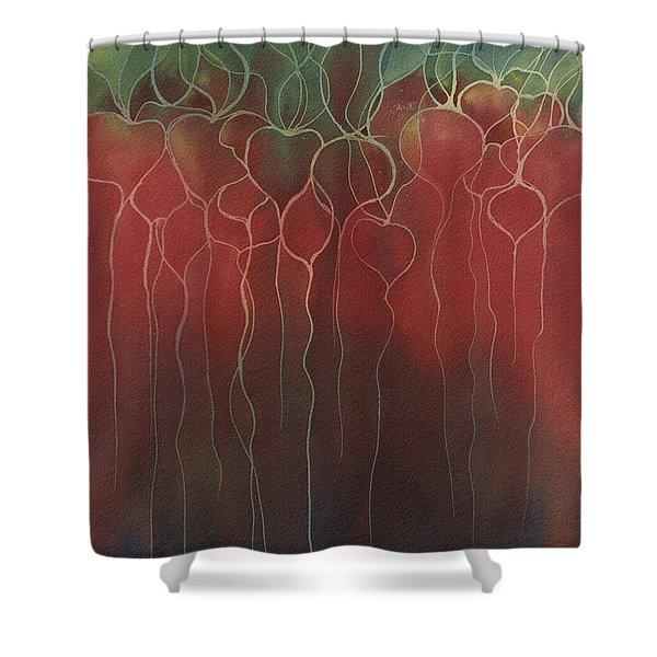 Radish Shower Curtain