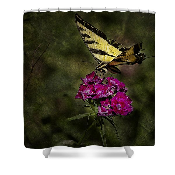 Ragged Wings Shower Curtain