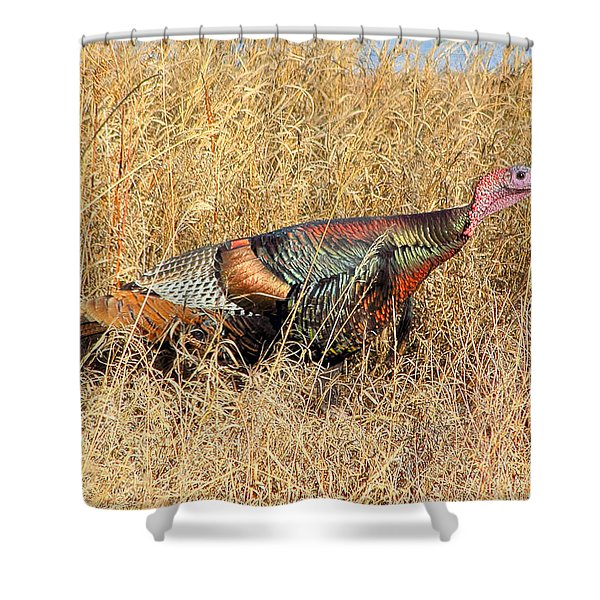 Rainbow Turkey Shower Curtain