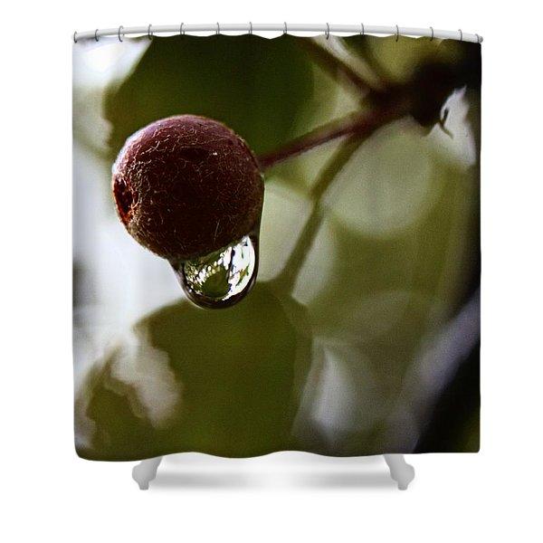 Raindrop Reflection 1 Shower Curtain