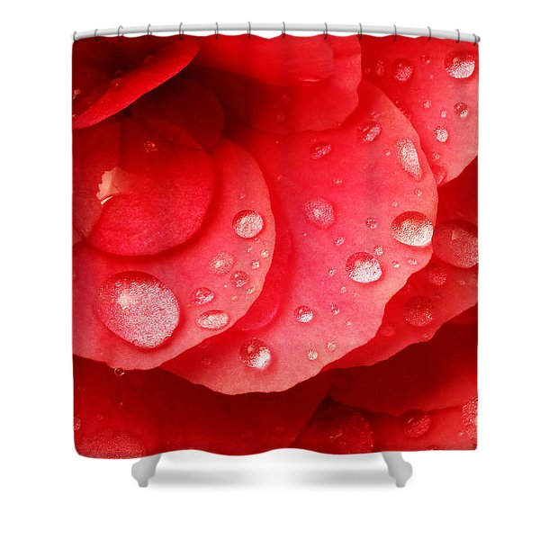 Raindrops On Red Begonia Shower Curtain