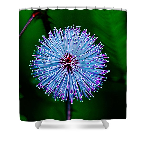 Rainforest Flower Shower Curtain