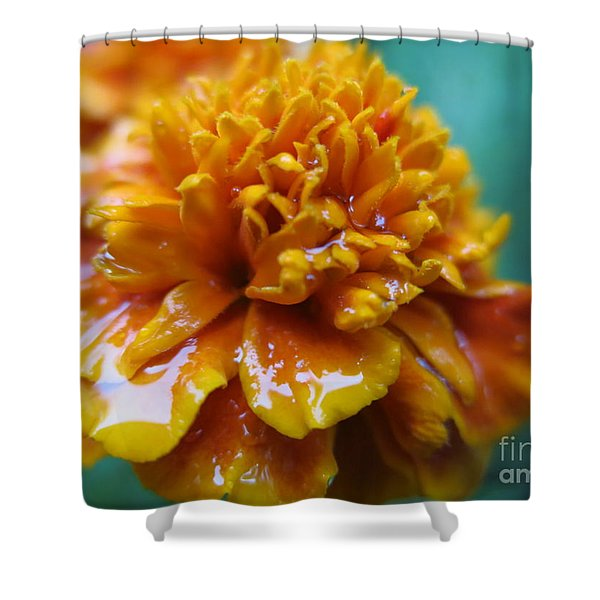 Rainy Marigolds Shower Curtain