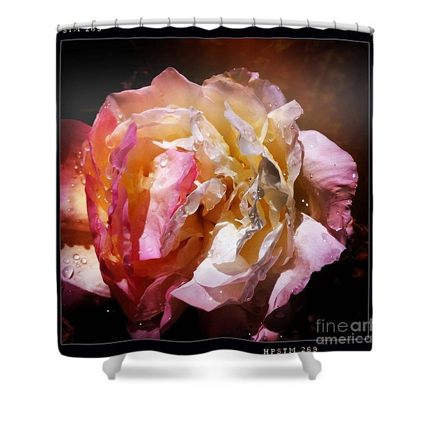 Rainy Rose Shower Curtain