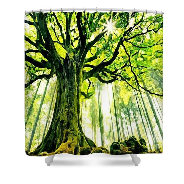Raised By The Light Shower Curtain