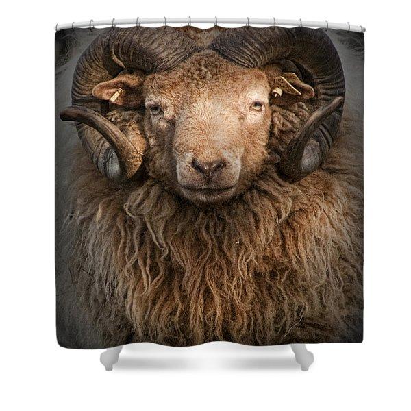 Ram Portrait Shower Curtain