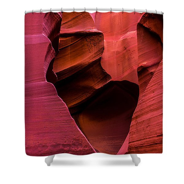 Rattlesnake Heart Shower Curtain
