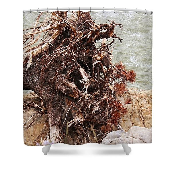 Ravaged Roots Shower Curtain