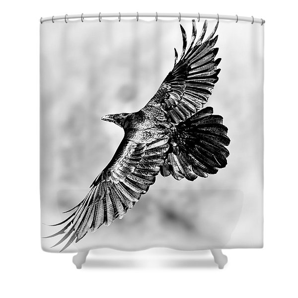 Raven Of Death Valley Shower Curtain