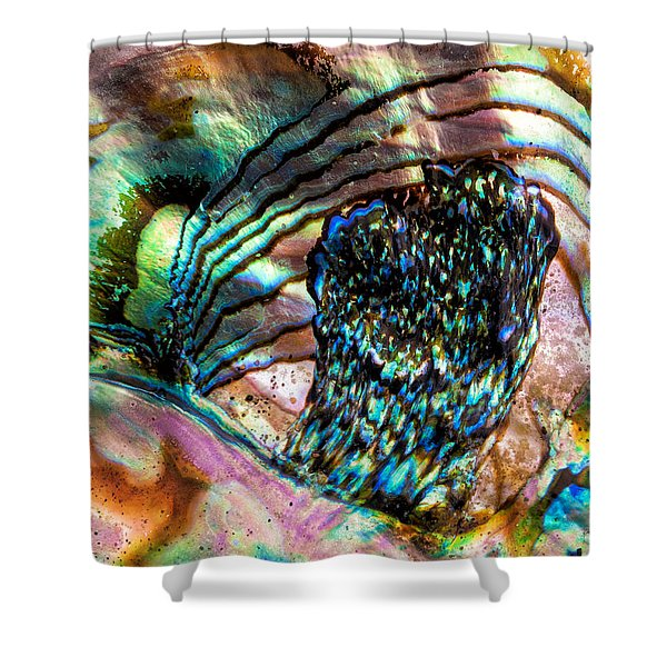 Red Abalone Shower Curtain