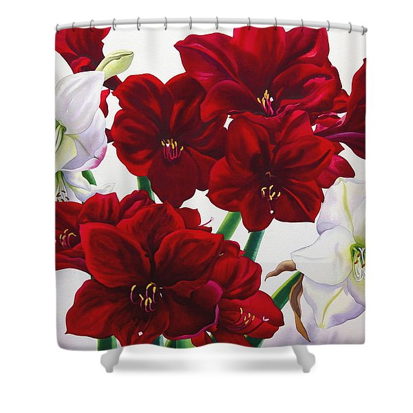 Red And White Amaryllis Shower Curtain