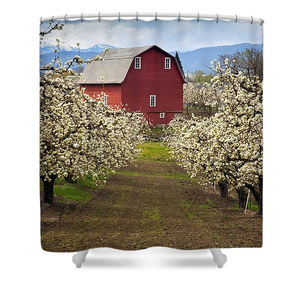 Red Barn Spring Shower Curtain