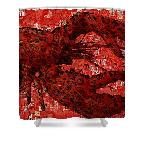 Red Lobster 1 Shower Curtain