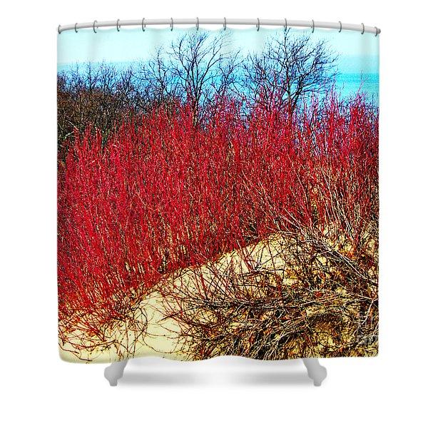 Red Osier Dogwood Shower Curtain