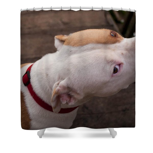 Red Pit 3 Shower Curtain