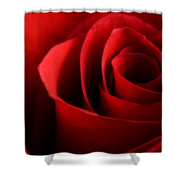 Red Rose Macro Shower Curtain