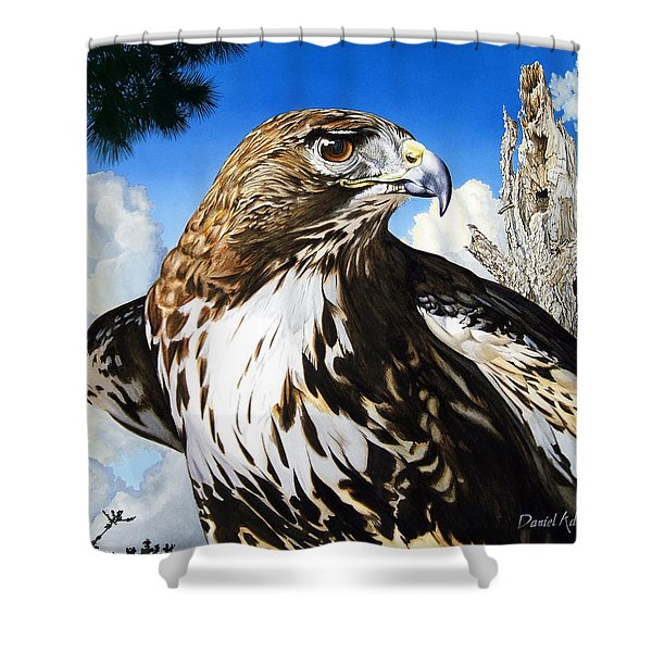 Da141 Red Tailed Hawk By Daniel Adams Shower Curtain
