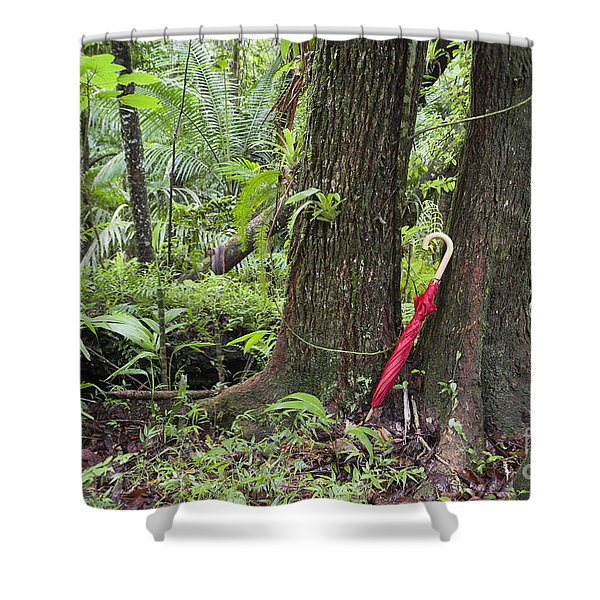 Shower Curtain featuring the photograph Red Umbrella Leaning Against Tree In Rainforest by Bryan Mullennix