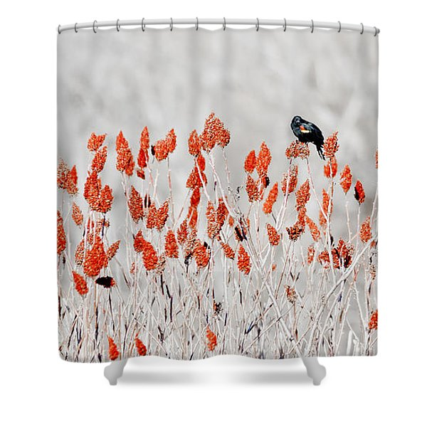 Red-winged Blackbird Shower Curtain