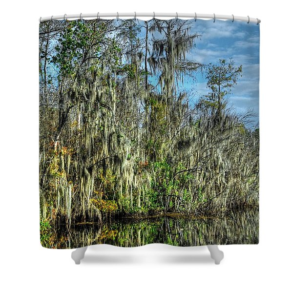 Reflectionist Shower Curtain