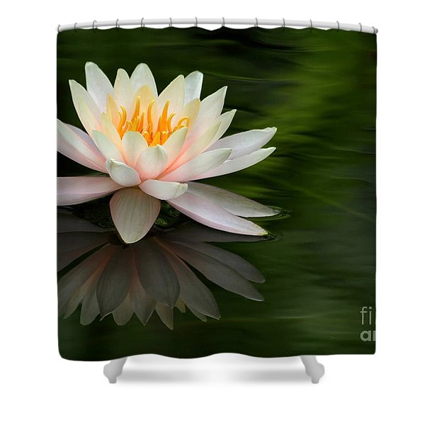 Reflections Of A Water Lily Shower Curtain