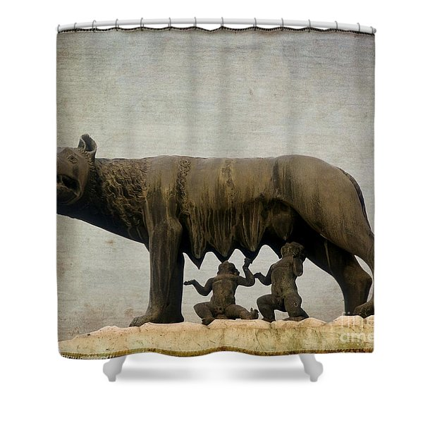 Remus And Romulus Shower Curtain