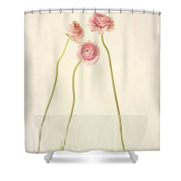 Renoncules Shower Curtain