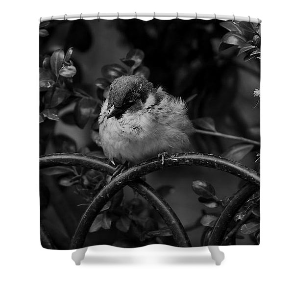 Rest For The Weary Shower Curtain