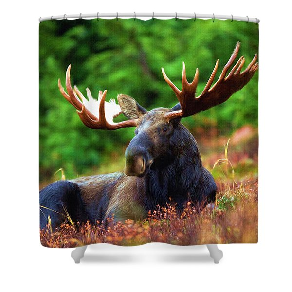 Resting In Peace Shower Curtain